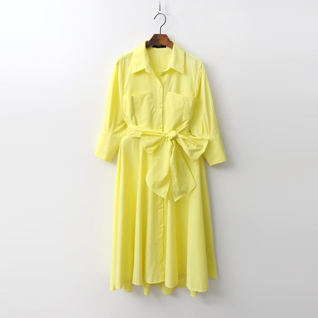 Swan Fit N Flare Shirts Dress